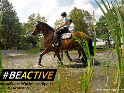 Europäische Woche des Sports: Reitvereine können teilnehmen